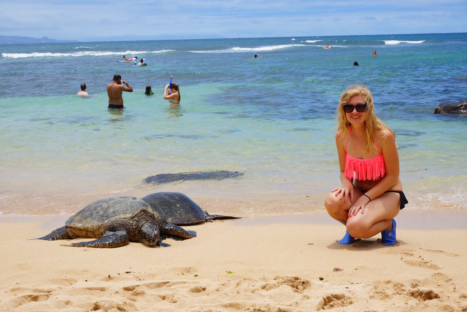 Turtle beach on Hawaii