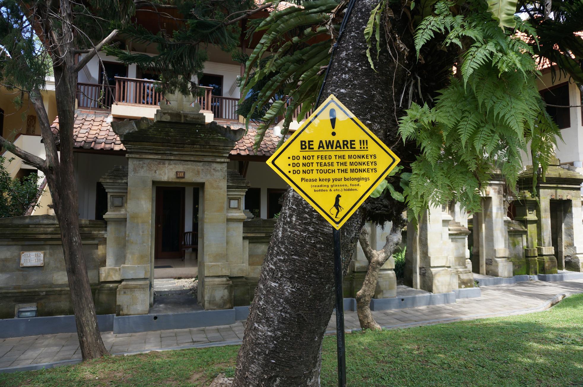 monkey-hotel-ubud