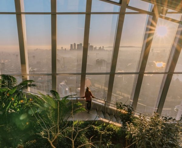 skygarden 40-most-instagrammable places in London